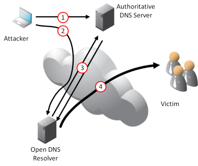 Finding and Fixing Open DNS Resolvers - Infoblox Experts Community
